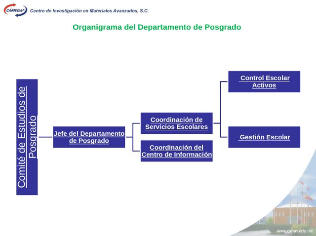 organigrama-posgrado